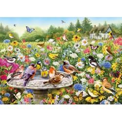The Secret Garden (1000)