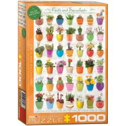 Cacti & Succulents (1000)
