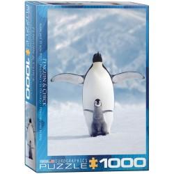 Penguin & Chick (1000)