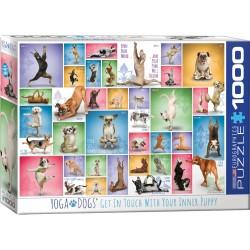 Yoga Dogs (1000)
